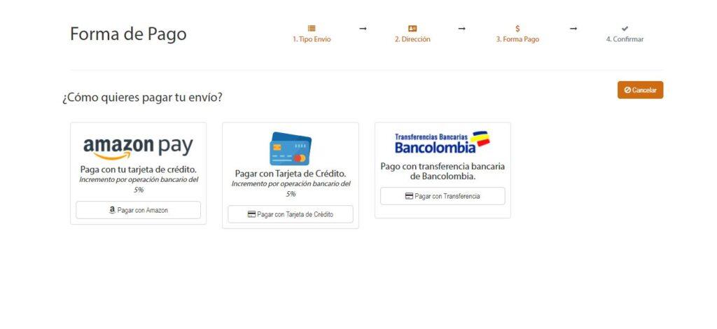 Formato de pago